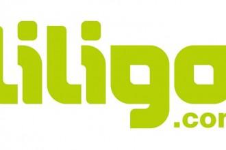 Logo liligo