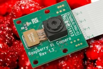 Raspberry Pi (RS146)